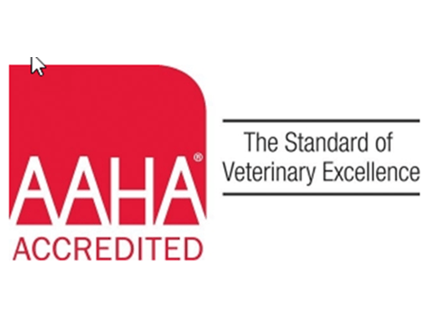 AAHA Standard of Veterinary Excellence